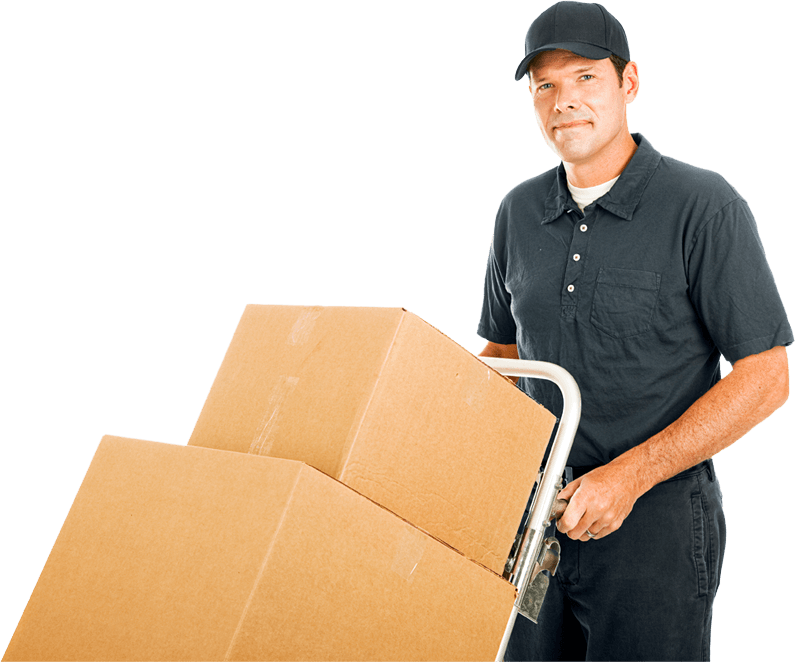 5 star movers LLC - best movers bronx